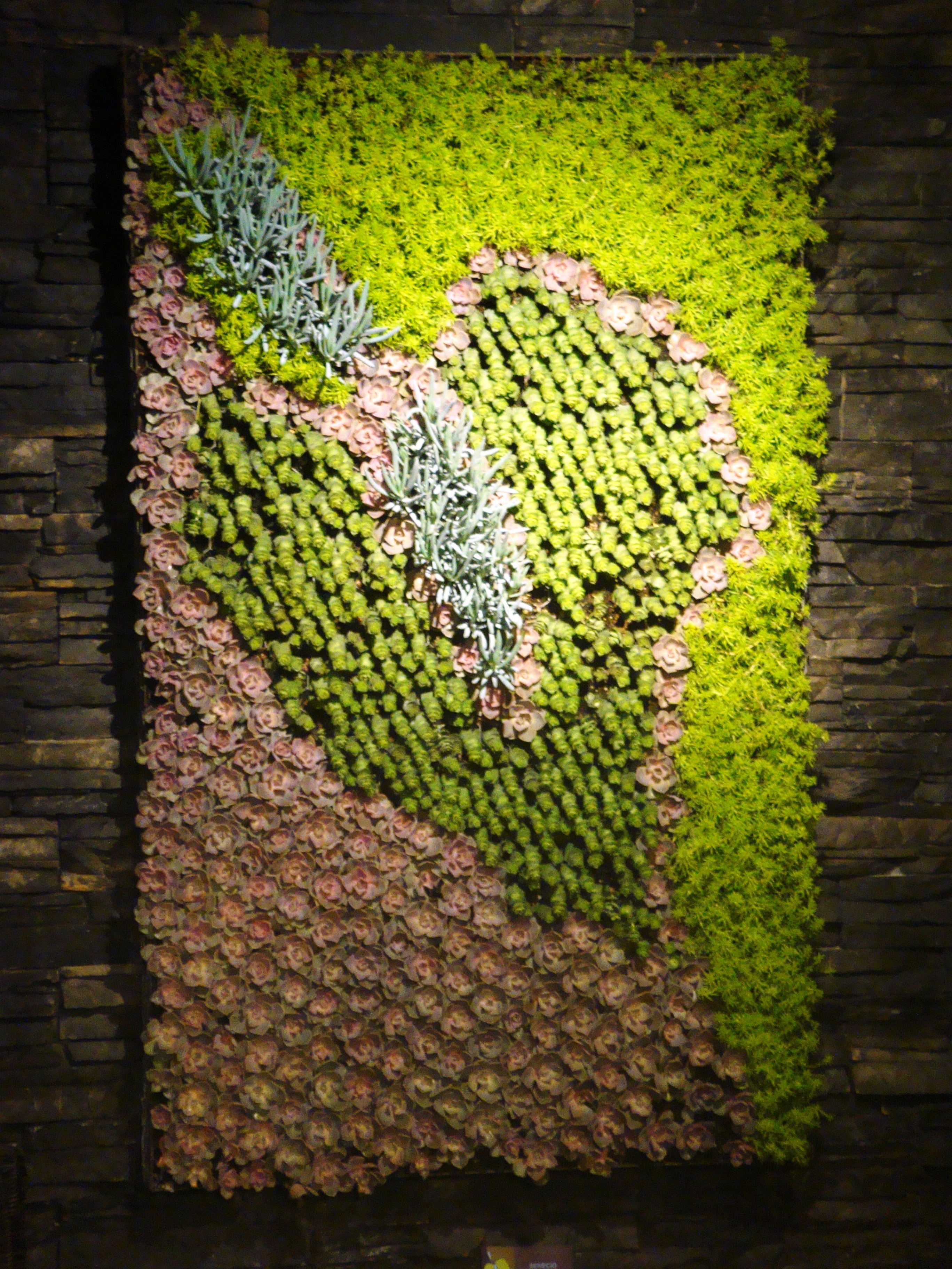 Flower Shows 2012 | Horticulture - The Art  Science of Smart
