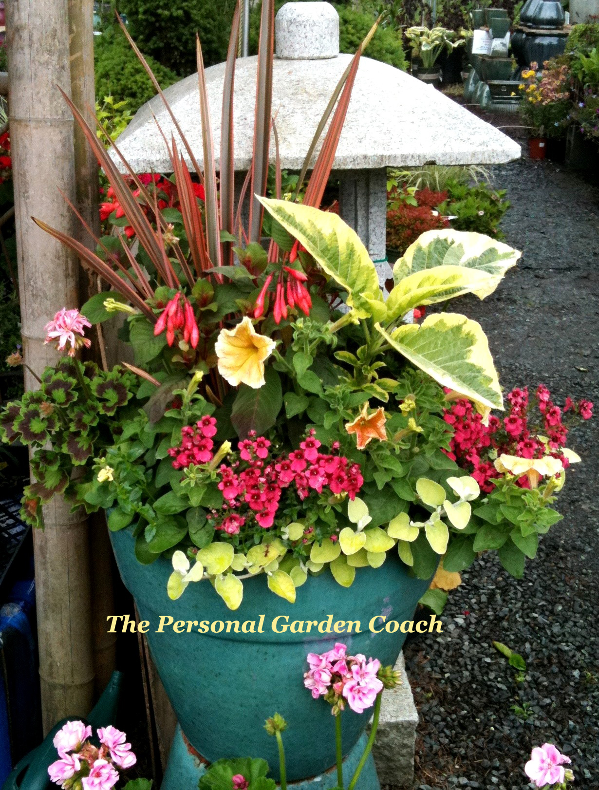 Container Garden Design pretty container gardening My
