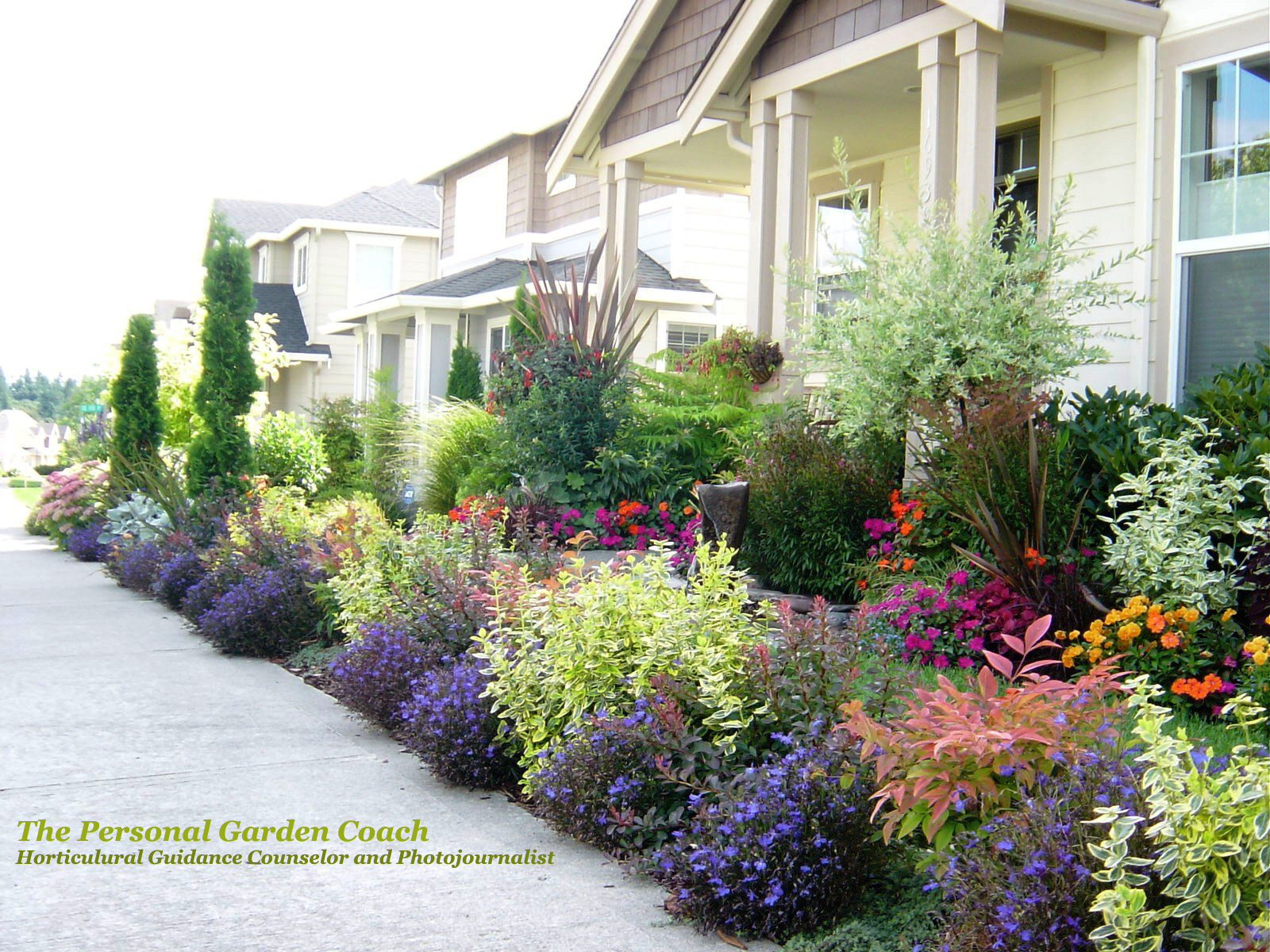 Gardens entry gardens on pinterest front yards for Colorful front yard landscaping