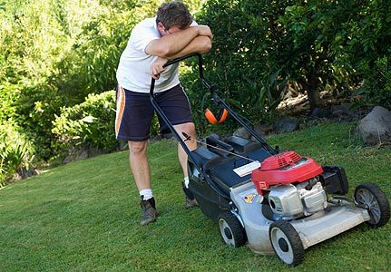 The Personal Garden Coach The Motivational Gardener At Large